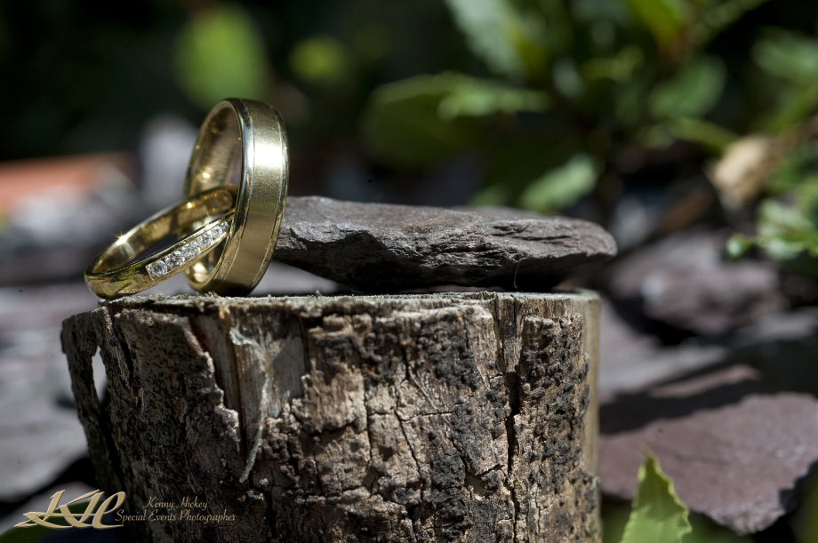 creative shot os wedding rings on tree bark