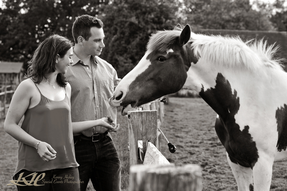 Rachael &Alex pre-wedding shoot with horse in bluebell woods